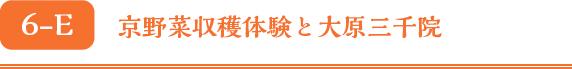 京野菜収穫体験と大原三千院